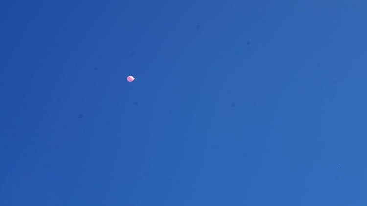 1.5-xlm-gia-th-zwh-thn-elpida-kai-to-fws-Pink-the-City-2017-9