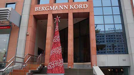 Χριστουγεννιάτικο Δέντρο (2) - Bergmann Kord 2016